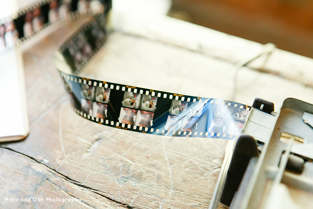 Film in cutter